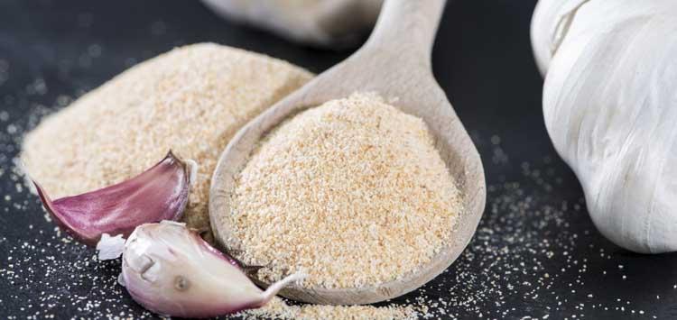 Garlic Powder Seasoning