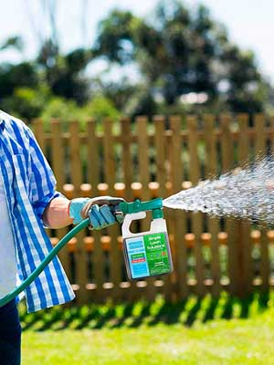 Benefits of Liquid Lawn Fertilizer