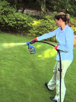 Disadvantages of Liquid Lawn Fertilizer