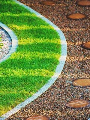 Tips on Choosing the Best Liquid Lawn Fertilizer