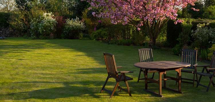 Until October When to Spray Lawn Fertilizer
