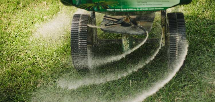 When Should you fertilizer your lawn