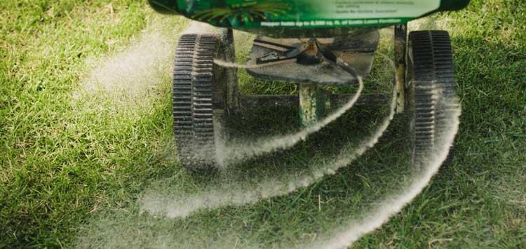 When Should you fertilizer your lawn