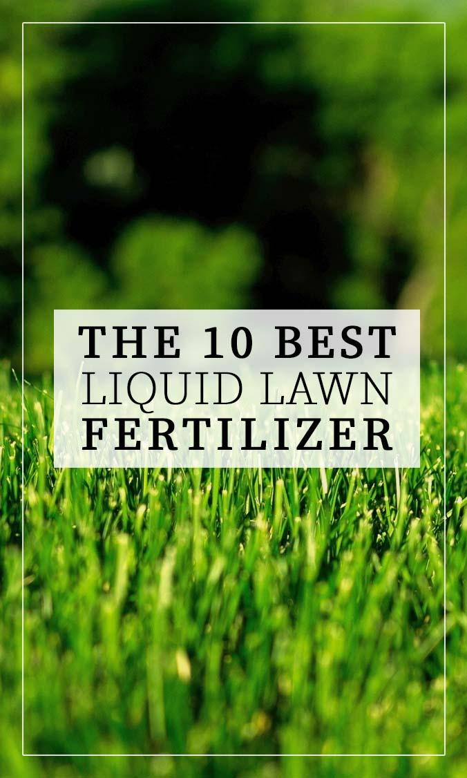 Best Liquid Lawn Fertilizer Side Bar Banner