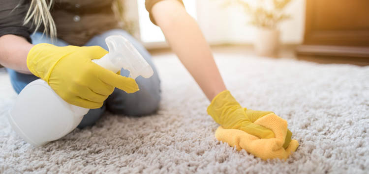 Blot, But Never Rub Cleaning Tips