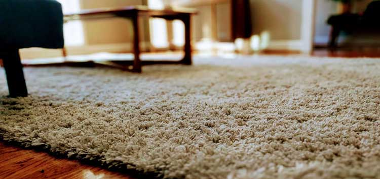 DIY Carpet Cleaning Tricks for Grease Stains