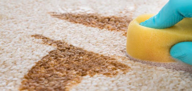 Dont Rub Blot DIY Cleaning Tricks