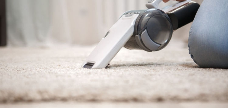 Handheld Vacuum for Pet Hair Weight