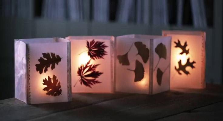 Paper Lanterns Dried Flowers