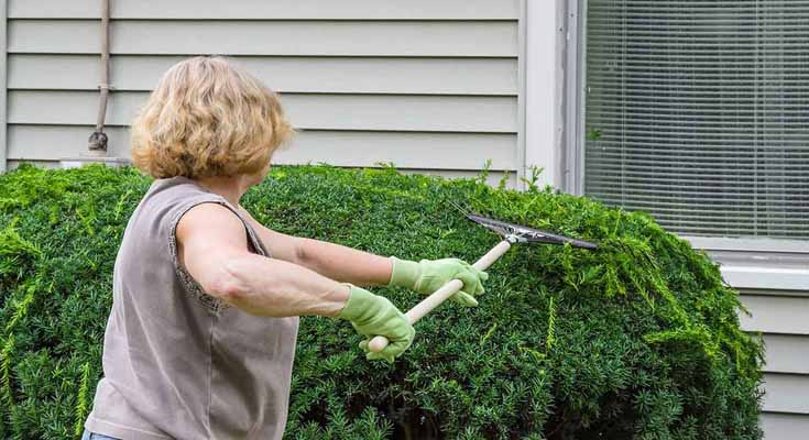 Preparing for a Hedge