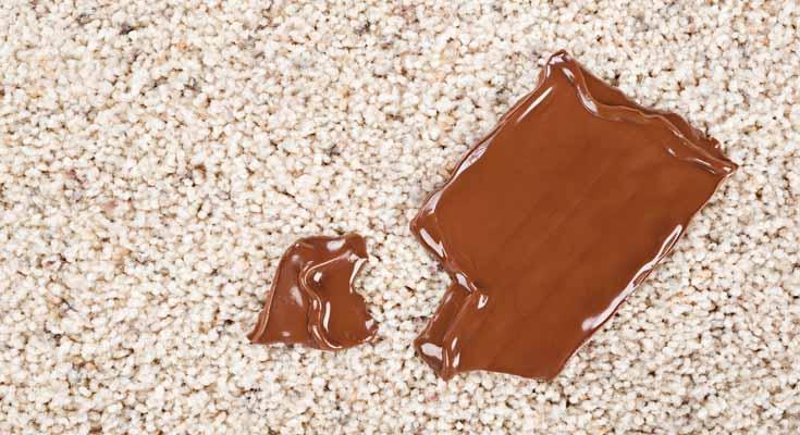 Baking Soda DIY Carpet Stain Remover